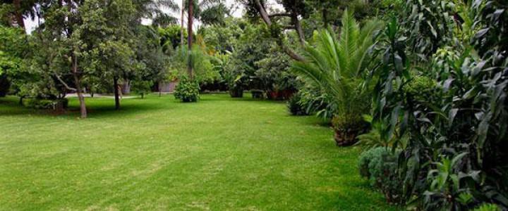 Jardinería SV