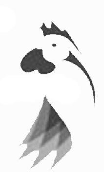 Avícola - Distribuidora Progreso