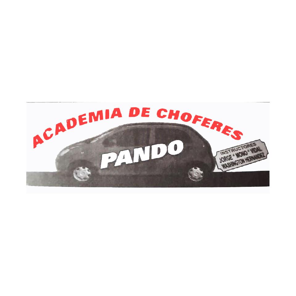 ACADEMIA DE CHOFERES PANDO