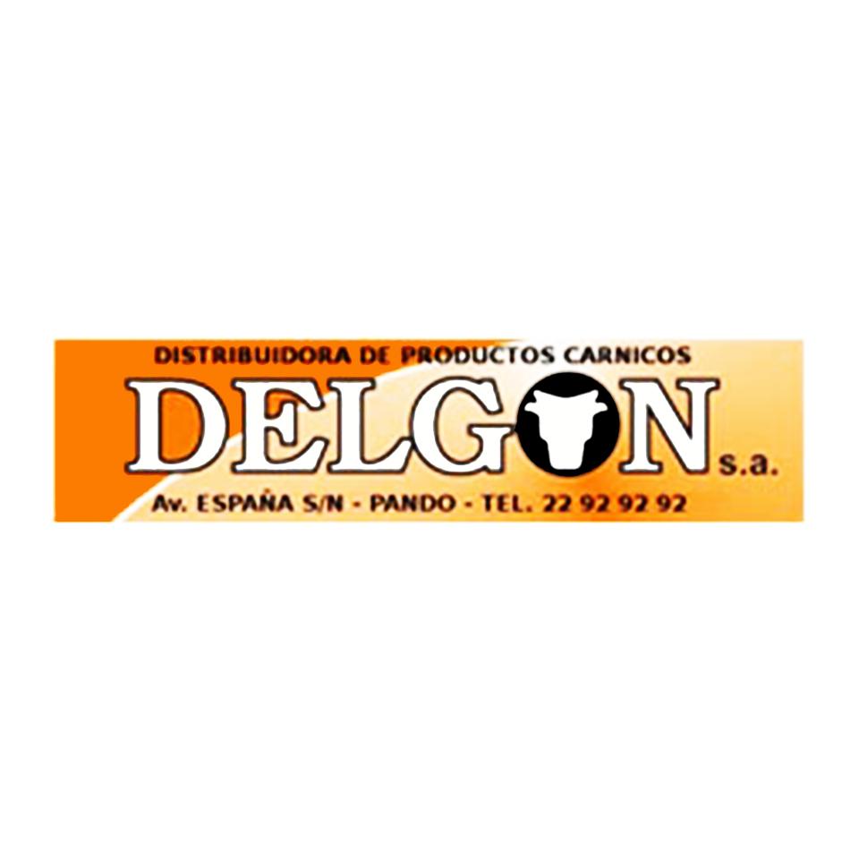 Delgon S.A