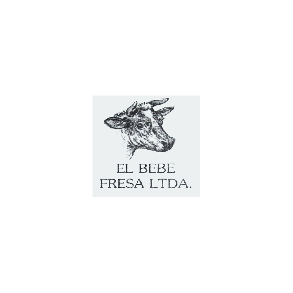 EL BEBE FRESA LTDA