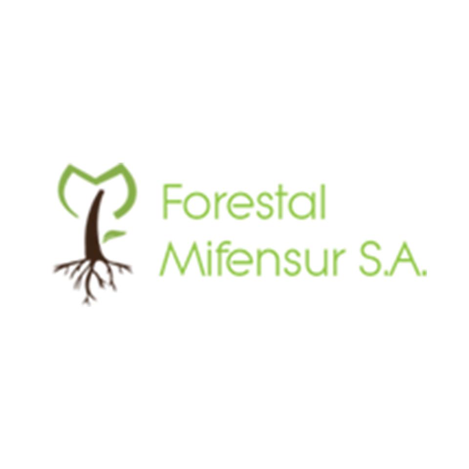Forestal MIFENSUR S.A.