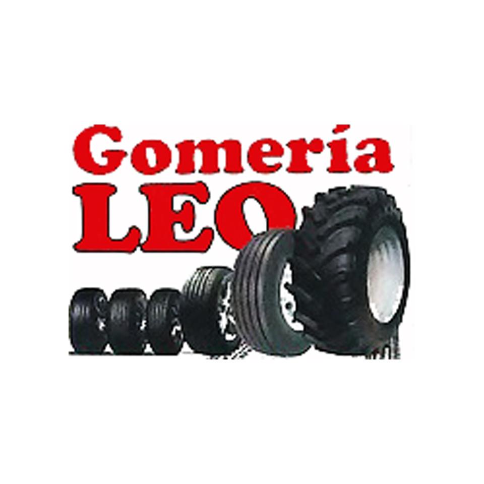Gomería Leo