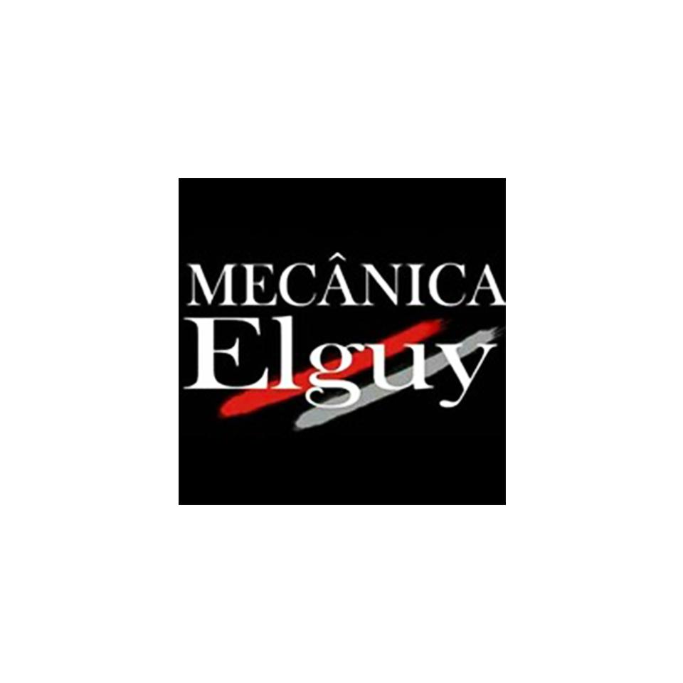 Mecânica Elguy