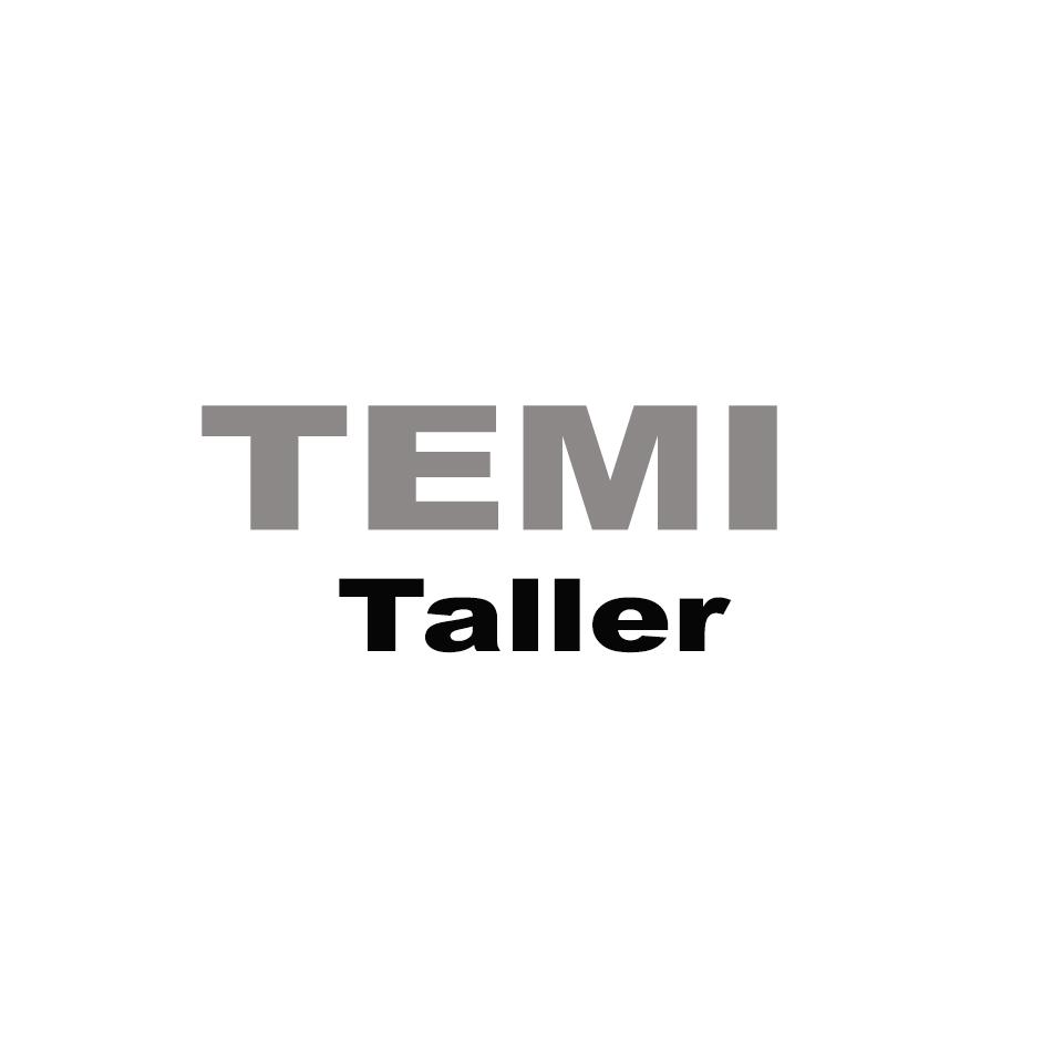 TEMI Taller