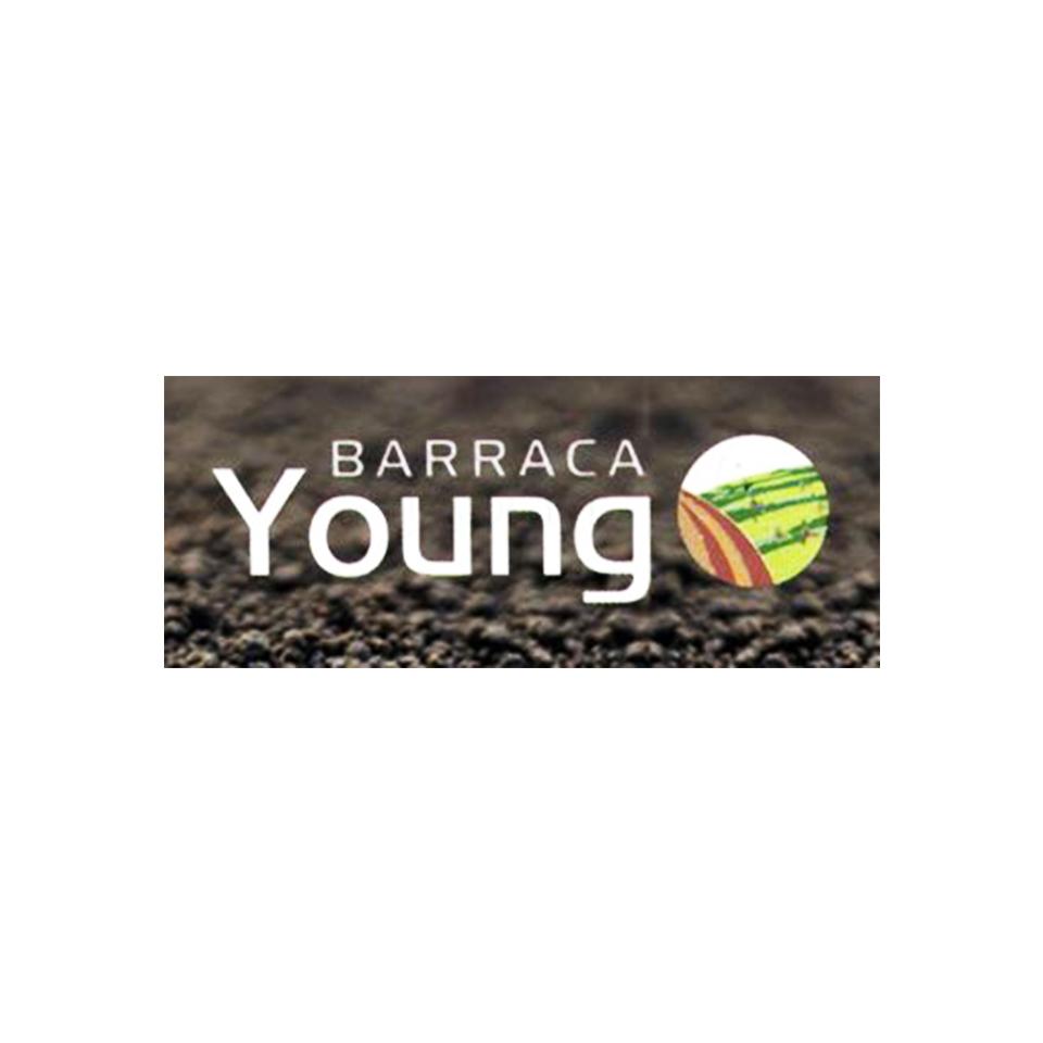 Barraca Young